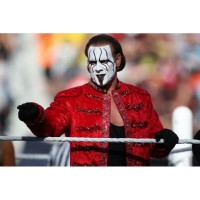 Sting (Steve Borden) WWE Superstar Red Long Coat For Sale